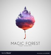 A Magic Forest