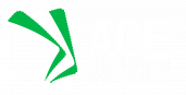 Ace Home and Garden Maintenance