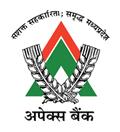 Apex Bank India