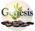 Genesis Ibogaine Center