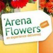 Arena Online Ltd.