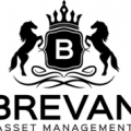Brevan Asset Management