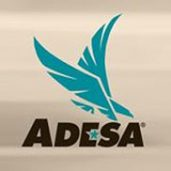 ADESA United States