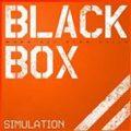Black Box Simulation