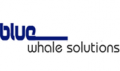 Blue Whale Solutions