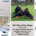 A1 Dog Training