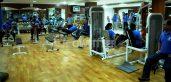Add Life Gym