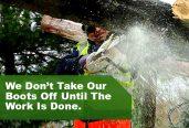 Abc Tree Service Pros